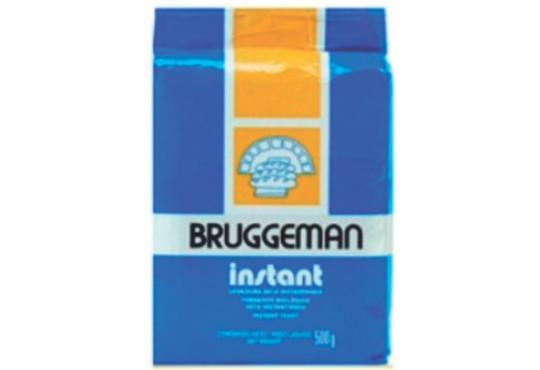 FERMENTO INST BIOLÓGICO BRUGGEMANN 500GR